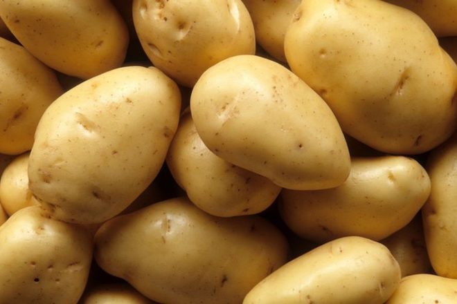 Nakon pet dana na ecstasyu, muškarac ulovljen kako hotelsku kadu puni krumpirima