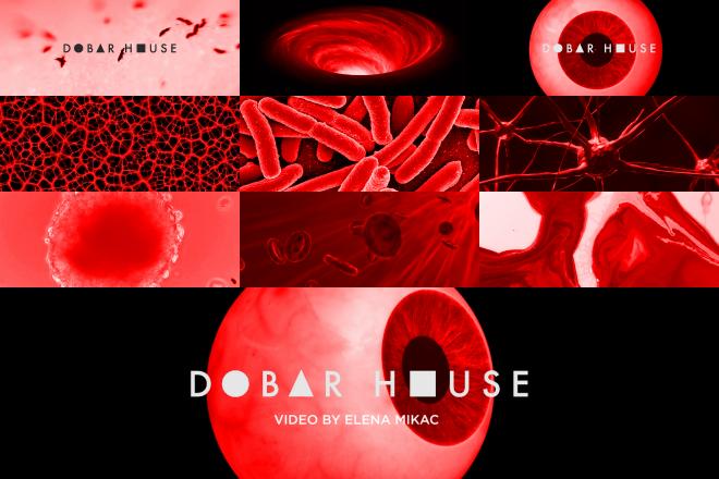 Video premijera: House na hrvatskom jeziku uz psihodelični spot