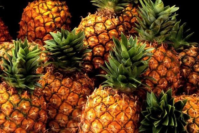 Kokain u vrijednosti od 19 milijuna dolara pronađen u pošiljci ananasa