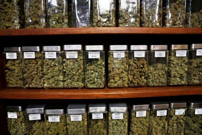 S početkom godine u Kaliforniji počela legalna prodaja marihuane u rekreativne svrhe